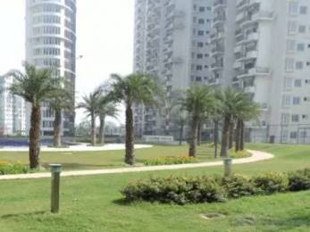 1188 sqft, 2 bhk Apartment in Emaar Palm Drive Sector 66, Gurgaon at Rs. 36000