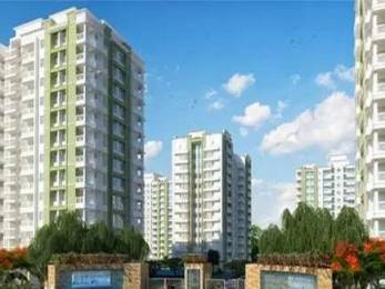 1175 sqft, 2 bhk Apartment in Builder Project Jaipur Road, Jaipur at Rs. 45.4000 Lacs
