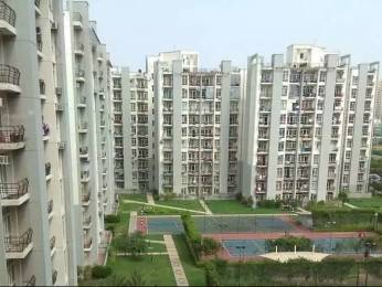 1110 sqft, 2 bhk Apartment in Omaxe Grand Sector 93B, Noida at Rs. 53.0000 Lacs