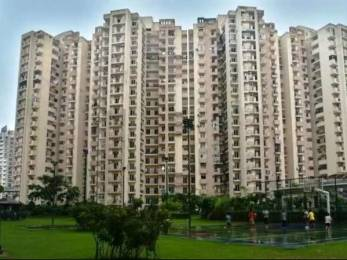 1360 sqft, 3 bhk Apartment in Paramount Floraville Sector 137, Noida at Rs. 68.0000 Lacs