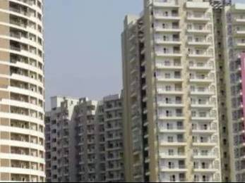 1080 sqft, 2 bhk Apartment in Gulshan Vivante Sector 137, Noida at Rs. 64.8000 Lacs