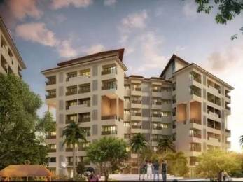 493 sqft, 1 bhk Apartment in Mirador Prangan Phase 1 Shahapur, Mumbai at Rs. 14.9300 Lacs