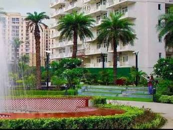 1000 sqft, 2 bhk Apartment in K World Estates Builders KW Srishti Raj Nagar Extension, Ghaziabad at Rs. 9000