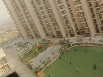 965 sqft, 2 bhk Apartment in Builder Gaur City 5th Avenue Gaur City Noida Extension Greater Noida Gaur City Road, Noida at Rs. 9500