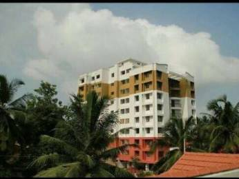 450 sqft, 1 bhk Apartment in Builder Project Maradu, Kochi at Rs. 18.0000 Lacs