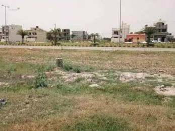 1242 sqft, Plot in Builder Sector 123 Sunny Enclave Sunny Enclave, Chandigarh at Rs. 20.7000 Lacs