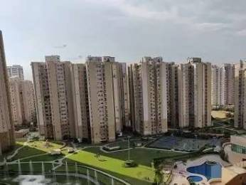 1695 sqft, 3 bhk Apartment in Paras Tierea Sector 137, Noida at Rs. 15000