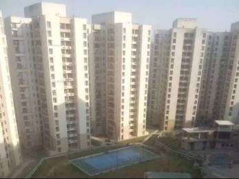 1365 sqft, 3 bhk Apartment in Jaypee Kosmos Sector 134, Noida at Rs. 48.5000 Lacs