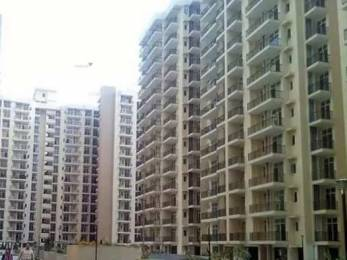 1150 sqft, 2 bhk Apartment in Skytech Matrott Sector 76, Noida at Rs. 63.3000 Lacs