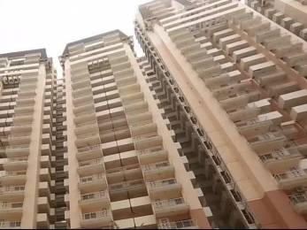 1610 sqft, 3 bhk Apartment in Wall Rock Aishwaryam Sector 16C Noida Extension, Greater Noida at Rs. 59.0000 Lacs