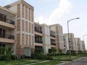 2580 sqft, 4 bhk Apartment in Puri VIP Floors Sector 81, Faridabad at Rs. 21000