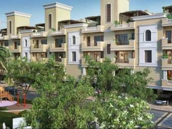 1550 sqft, 3 bhk Apartment in Builder Myst Arcade Highland Marg, Chandigarh at Rs. 47.5000 Lacs