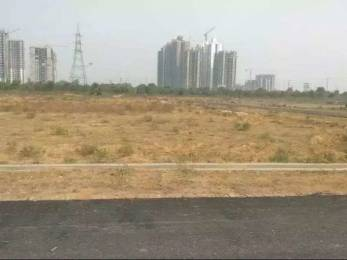 1507 sqft, Plot in Builder Authority plots kisaan quota Sector 12 Noida Extension, Greater Noida at Rs. 31.0000 Lacs