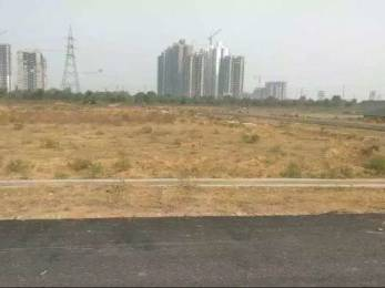 1292 sqft, Plot in Builder Authority plots kisaan quota Sector 12 Noida Extension, Greater Noida at Rs. 27.0000 Lacs
