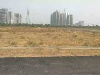 969 sqft, Plot in Builder Authority plots kisaan quota Sector 12 Noida Extension, Greater Noida at Rs. 20.2500 Lacs