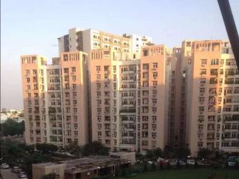 1275 sqft, 2 bhk Apartment in Rohtas Plumeria Gomti Nagar, Lucknow at Rs. 62.0000 Lacs