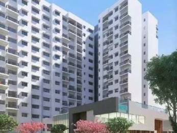 1260 sqft, 2 bhk Apartment in Godrej Avenues Yelahanka, Bangalore at Rs. 68.9850 Lacs