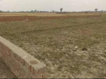 1000 sqft, Plot in Builder Project Phaphamau Road, Allahabad at Rs. 6.5000 Lacs
