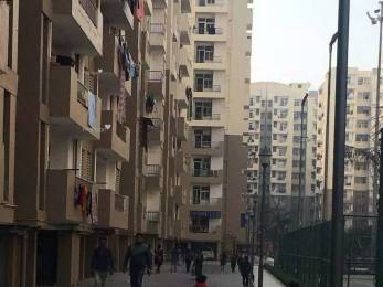 1500 sqft, 3 bhk Apartment in Builder Project Bhopura, Ghaziabad at Rs. 39.0000 Lacs