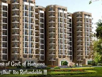 808 sqft, 3 bhk Apartment in Auric City Homes Sector 82, Faridabad at Rs. 24.9800 Lacs