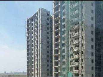 1310 sqft, 3 bhk Apartment in Hero Hero Homes Sidhwan Canal Road, Ludhiana at Rs. 58.7400 Lacs