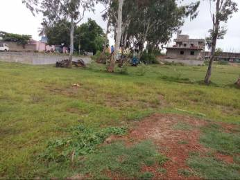 5000 sqft, Plot in Builder BHIMPURA PLOT Balasore Bhadrak Cuttack Road, Balasore at Rs. 17.0000 Lacs