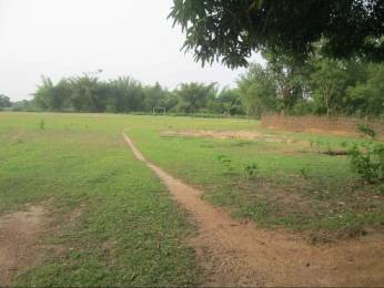 9000 sqft, Plot in Builder FM NAGAR PLOT Fakir Mohan Nagar, Balasore at Rs. 22.0000 Lacs