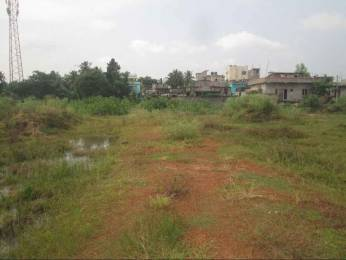 9000 sqft, Plot in Builder MOTIGANJ PLOT Motigang Road, Balasore at Rs. 30.0000 Lacs