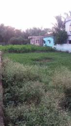 2000 sqft, Plot in Builder Bampada Plot near CIPET Balasore, Balasore at Rs. 8.0000 Lacs