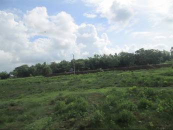 7000 sqft, Plot in Builder SARAGAN PLOT Sunduri, Balasore at Rs. 9.0000 Lacs