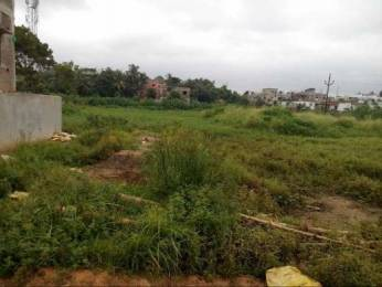 5227 sqft, Plot in Builder Sai varsha Balasore Bhadrak Cuttack Road, Balasore at Rs. 6.0000 Lacs