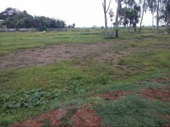 8600 sqft, Plot in Builder Project Sunduri, Balasore at Rs. 31.0000 Lacs