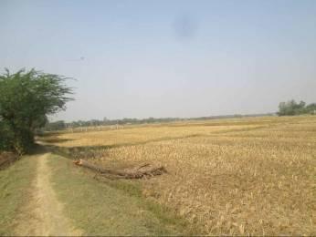 10890 sqft, Plot in Builder chandipur Chandipur Road, Balasore at Rs. 50.0000 Lacs