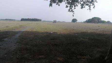 1000 sqft, Plot in Builder Pryagance town Shantipuram, Allahabad at Rs. 6.5100 Lacs