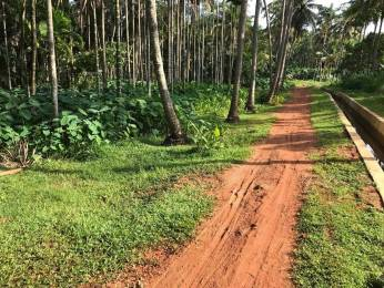 161 sqft, Plot in Builder Chelannur 82 Chelannur, Kozhikode at Rs. 2.5000 Lacs