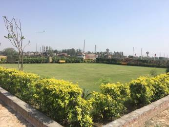 657 sqft, Plot in Builder Project Dera Bassi, Chandigarh at Rs. 6.2488 Lacs