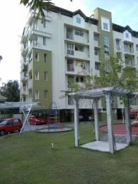 1220 sqft, 3 bhk Apartment in Anta River Valley Eroor, Kochi at Rs. 68.0000 Lacs