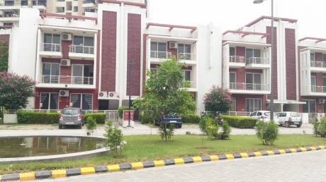 1585 sqft, 3 bhk BuilderFloor in Orchid Island Sector 51, Gurgaon at Rs. 1.5000 Cr