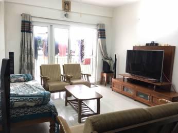 1571 sqft, 3 bhk Apartment in NR Springwoods Jakkur, Bangalore at Rs. 78.0000 Lacs