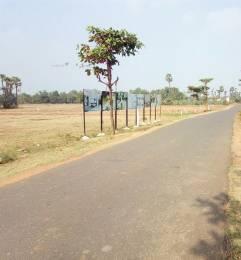 1998 sqft, Plot in Builder NANDANAVANAM VISISTHA Dakamarri Village Road, Visakhapatnam at Rs. 14.4300 Lacs