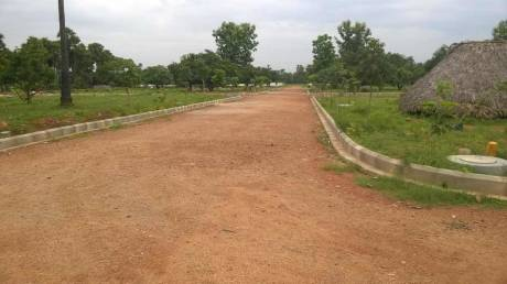 3600 sqft, Plot in Builder Nandanavanam 4 Revidi Road, Visakhapatnam at Rs. 30.0000 Lacs