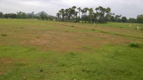 1800 sqft, Plot in Builder Alluri Gardens Dakamarri Village Road, Visakhapatnam at Rs. 25.0000 Lacs