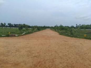 1620 sqft, Plot in Builder Nandanavanam Subhaprdha Tagarapuvalasa, Visakhapatnam at Rs. 21.6000 Lacs