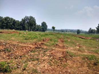 1503 sqft, Plot in Builder Nandanavanam Alluri gardens Dakamarri Village Road, Visakhapatnam at Rs. 20.8750 Lacs