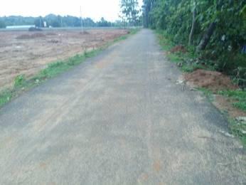 1503 sqft, Plot in Builder nandanavanam visista Dakamarri Village Road, Visakhapatnam at Rs. 10.8550 Lacs