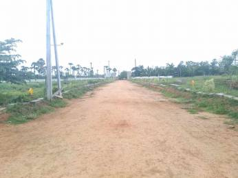 1800 sqft, Plot in Builder nandanavanam subhapradha Thagarapuvalasa Bheemili Road, Visakhapatnam at Rs. 25.0000 Lacs