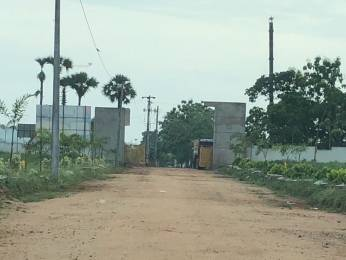 1503 sqft, Plot in Builder nandanavanam subhapradha Tagarapuvalasa, Visakhapatnam at Rs. 20.8750 Lacs