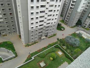 1400 sqft, 2 bhk Apartment in Sobha Aspire Dasarahalli on Tumkur Road, Bangalore at Rs. 20000