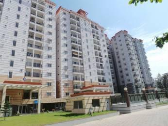 1710 sqft, 2 bhk Apartment in RNS Shanthi Nivas Yeshwantpur, Bangalore at Rs. 34000