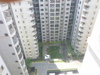 1640 sqft, 3 bhk Apartment in Builder brigade gatway Malleswaram, Bangalore at Rs. 45000